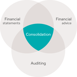 At the heart of accounting and financial expertise
